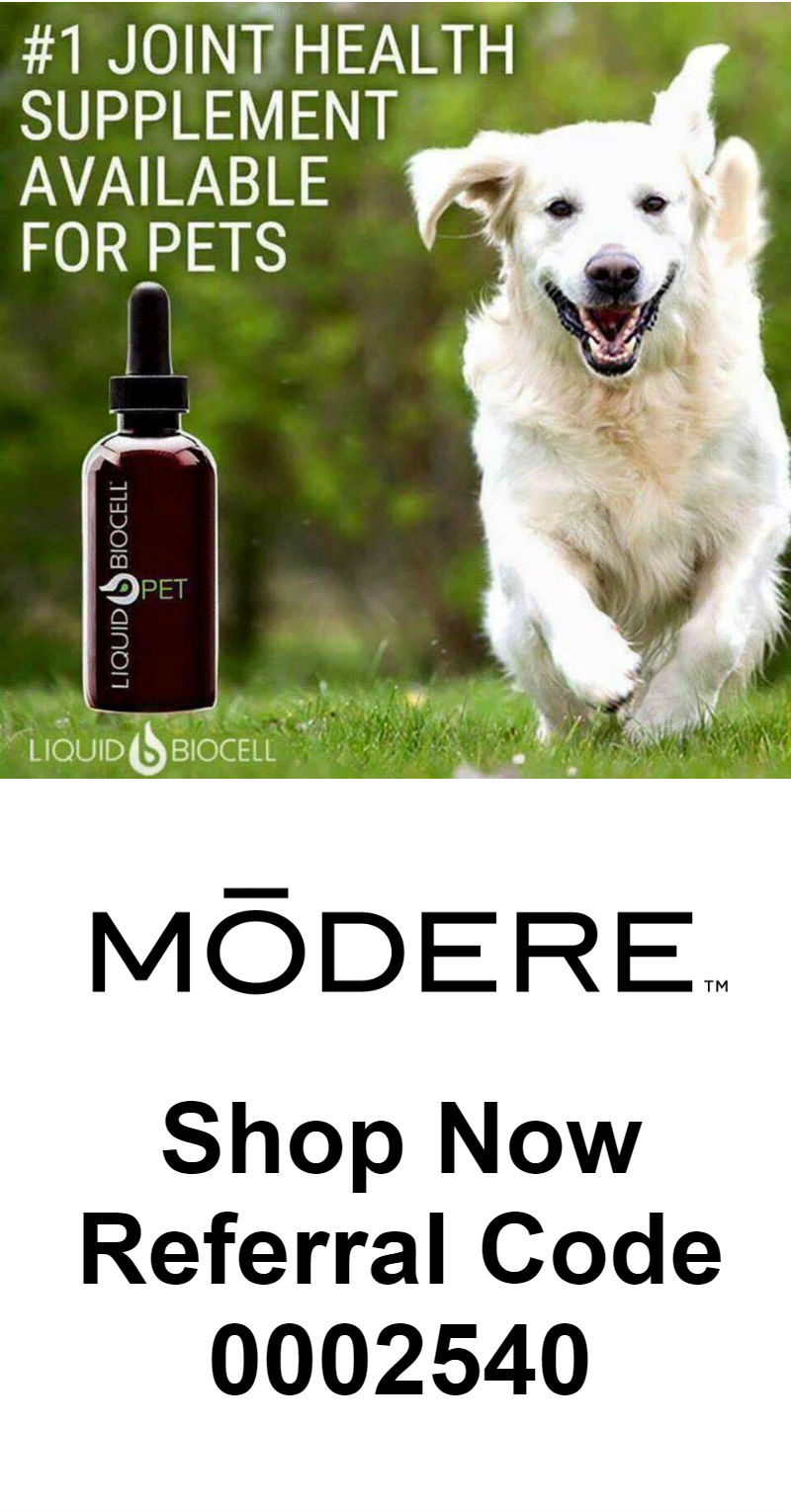 modere-lean-sculpting-system-shop-now